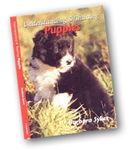 Understanding & Training Puppies